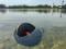 Фото Портативная колонка JBL Clip 3 Gray (JBLCLIP3GRY)