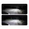 Фото Светодиодная лампа VIAN N1 H1 6000K (пара)